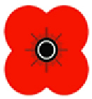 Remembrance Sunday Services